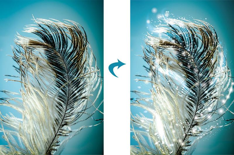 feather-o