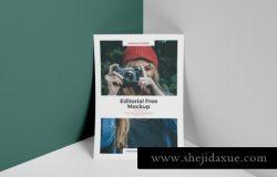 A4单页信签贴图展示模版 letterhead a4 Editorial Mockup