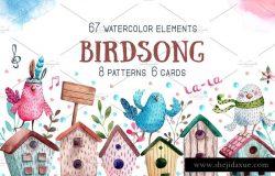 鸟鸣Birdsong – 高品质水彩剪贴画合集
