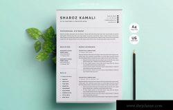 一份4页清爽明了的简历模板 Resume/CV Template 4 Pages Pack