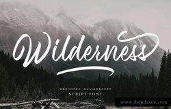 荒野书法风格英文手写字体 Wilderness Scipt MS