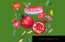 水彩石榴花卉插画 Pomegranate. Watercolor Clipart