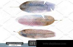 手绘水彩羽毛素材 Hand painted watercolor feathers