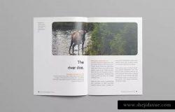 多用途杂志/画册/企业内宣INDD设计模板 Rounded Magazine