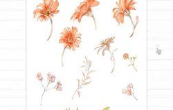 手绘花卉水彩婚礼请柬设计套件