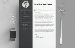 高端极品简历PSD/DOC模版 Resume/CV – TD