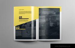 上市公司简介企业画册设计模板