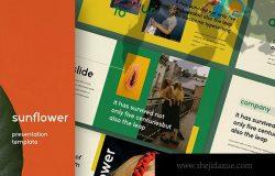 摄影工作室介绍PPT模板素材下载 Sunflowers – Powerpoint