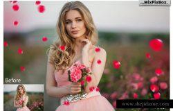 花瓣照片特效叠层