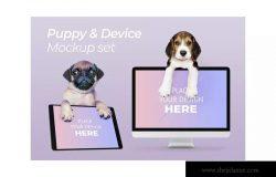 宠物主题网站设计演示电脑样机模板 Dog with Computer Mockup