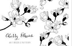 樱花花卉设计元素美术刷Photoshop笔刷