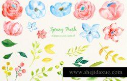 春季新鲜蓝粉色系水彩花卉插画