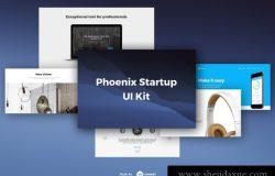 9现代时尚艺术设计工作室社交媒体电子商务web UI工具包Phoenix Startup UI Kit