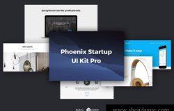 10现代时尚艺术设计工作室社交媒体电子商务web UI工具包Phoenix Startup UI Kit Pro