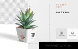 PSD逼真花盆植物样机模型