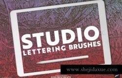 12个手写笔触笔刷 Lettering Brushes for Procreate