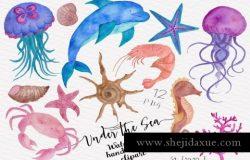 海洋生物水彩插画合集