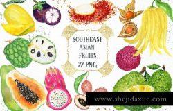 热带亚洲水果水彩画