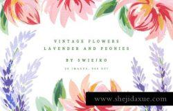 经典花卉插画 Lavender Peonies vintage flowers
