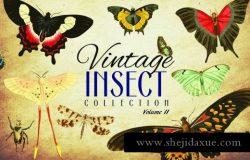 110款复古昆虫矢量插画合集 Vintage Insect Vector Graphics