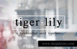 时尚品牌字体 Tigerlily