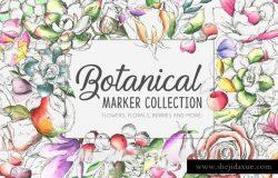 手绘水彩花卉植物设计素材 Botanic-Marker-Collection