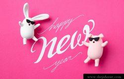 超酷2019粉色系新年猪猪侠和兔子高清素材