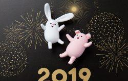 超酷2019黑金新年猪猪侠和兔子高清素材