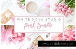 高清郁金香工作桌面场景实物高清图片合集包 Pink Photo Bundle