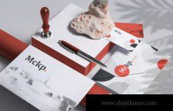 Branding Set Mockup