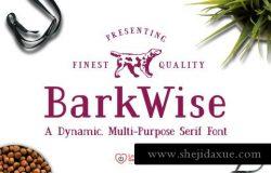 多用途衬线字体 BarkWise Multi-Purpose Serif Font