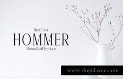 极简主义衬线字体 Hommer Minimal Serif 6 Font Family