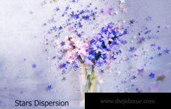 星星花卉特效 Stars Dispersion