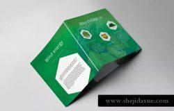 绿色能源新能源项目介绍三折页传单模板 Green Energy Trifold Brochure