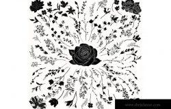 黑色手绘草药&花卉图案矢量素材