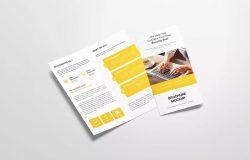 DL双折页企业宣传册设计样机模板