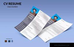 网页开发职位电子简历版式设计模板