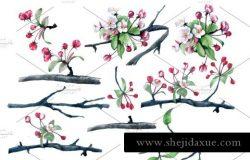 麻雀樱花水彩元素剪贴画设计素材SPARROW AND CHERRY BLOSSOM CLIPART