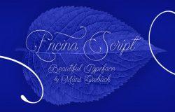 优雅自然英文书法字体 Encina Script Font Family
