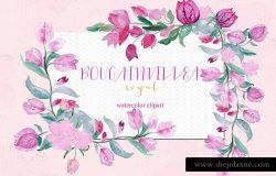 手绘水彩植物花设计素材 Bougainvillea-fuchsia-clipart
