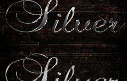 高端时尚的银色3D立体文字photoshop图层样式 Silver Text Effect [psd]