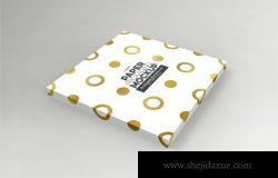 5假的方形纸盒和盖子样机(PSD)