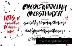 粗犷的脚本字体 Lady in Red script font