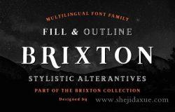 时尚的衬线字体 Brixton