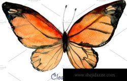 水彩蝴蝶剪贴画 Watercolor Clipart Orange Butterfly