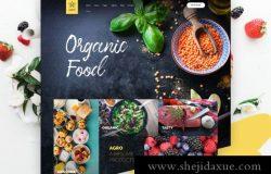 农业有机食品官网网页PSD模板素材