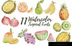 11款热带水果水彩插画设计素材 11 Watercolor Tropical Fruits Illustration