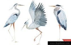 卡通手绘野生动物仙鹤水鸟鹭矢量插图设计素材