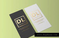 对折页烫金传单样机 DL Flyer Mock-Up / Foil Stamping Edition
