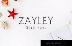 现代独特设计风格英文标语衬线字体 Zayley Serif Regular Font